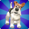 Agility Dogs Review iOS