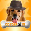 Golden IO Review iOS