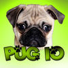 Pug IOPhoto  Video Game Review iOS