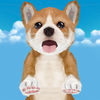 Puppy Race for Kids Review iOS